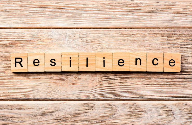Resilience can determine will decline or stabilize, or flourish during and after a crisis