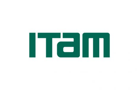 Itam | IE Law School
