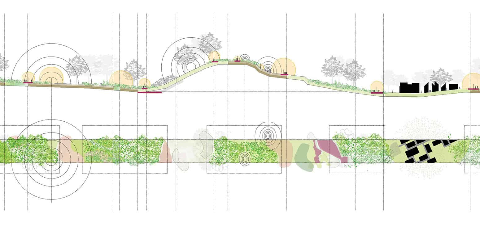 Location - Into the Woods - Student Projects | IE School of Architecture and Design